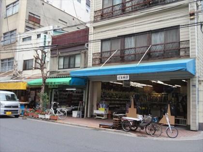 hakihakitownDCIM0206.jpg