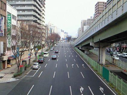 sennichidori_03.jpg