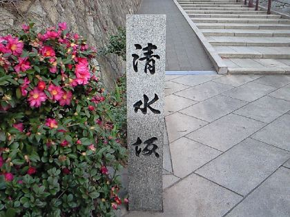 shimizuzaka02.jpg