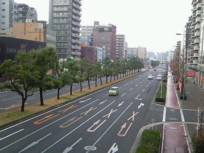 shinnaniwasuzi_0520.jpg