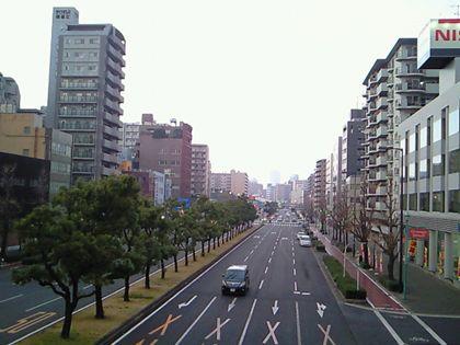 shinnaniwasuzi_0521.jpg