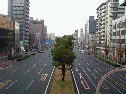 shinnaniwasuzi_0523.jpg