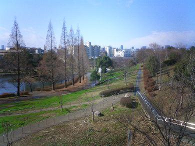 shirokitapark070221-01.jpg