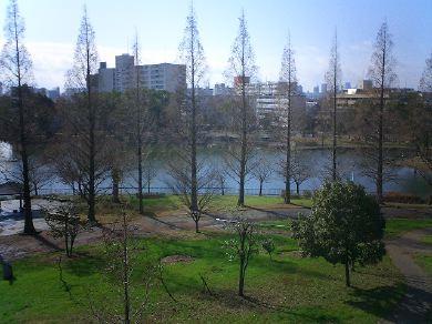 shirokitapark070221-02.jpg