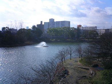 shirokitapark070221-08.jpg