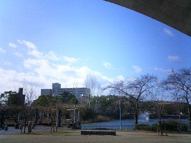 shirokitapark070221-13.jpg