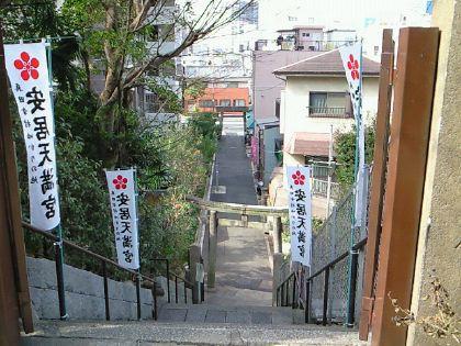 yasui103.jpg