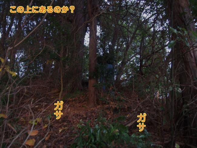 PC143907.jpg