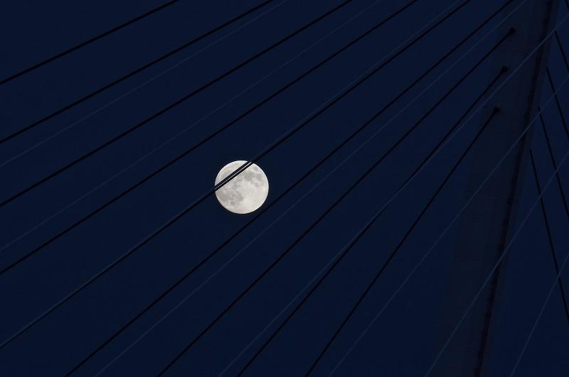 天保山渡船所から見る中秋の名月