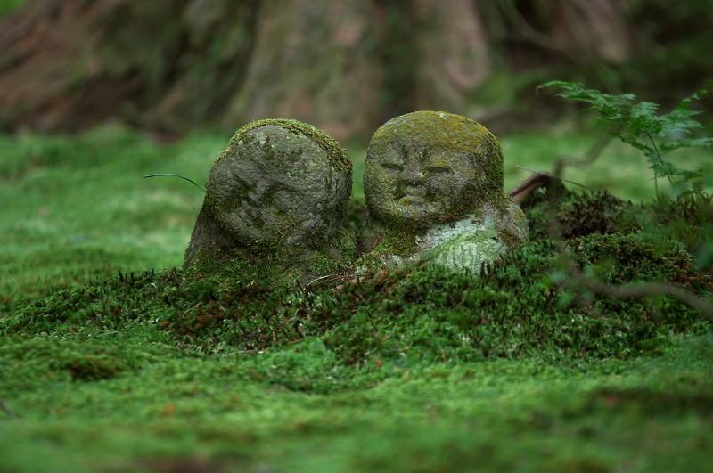 京都大原 三千院 石仏