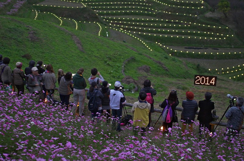 千早赤阪村 金剛山の里 棚田夢灯り&収穫祭2014