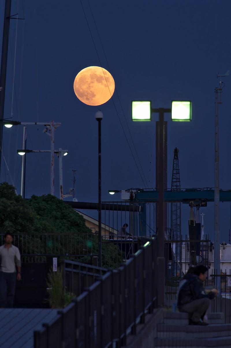 新西宮ヨットハーバー 満月