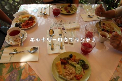 093_20111108005225.jpg