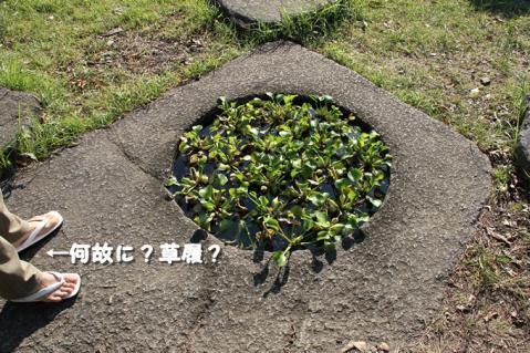 102_20111026012446.jpg