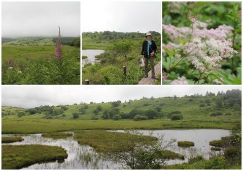 八島が原湿原 2日目5