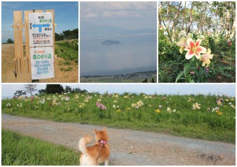 琵琶湖箱縦山3