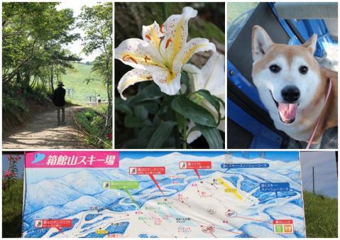 琵琶湖箱舘山4