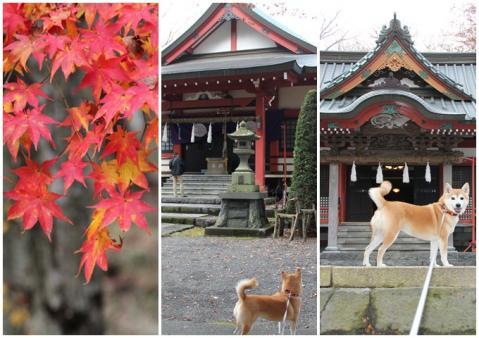 山中諏訪神社2