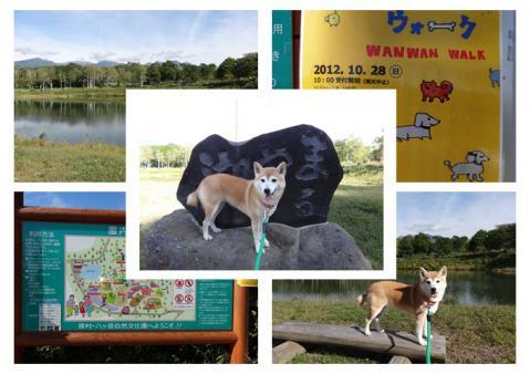 八ヶ岳自然文化園&まるやち湖