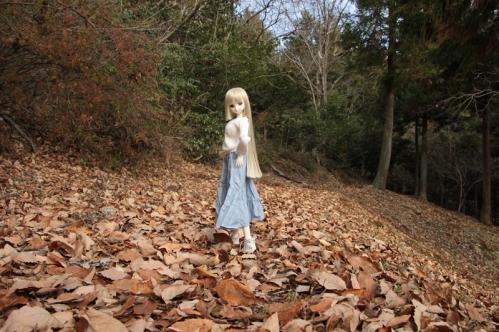森の小道にて5