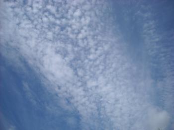 DSCN3647_convert_20110927220745.jpg