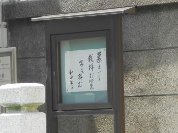 DSCN3917_convert_20120716174101.jpg