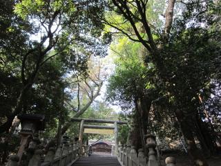 20120124 金比羅宮 石段