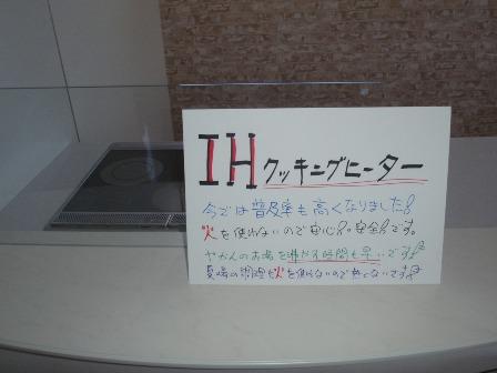 P6060066.jpg