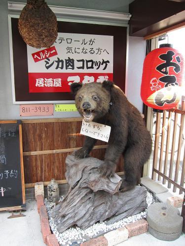 本星崎の熊