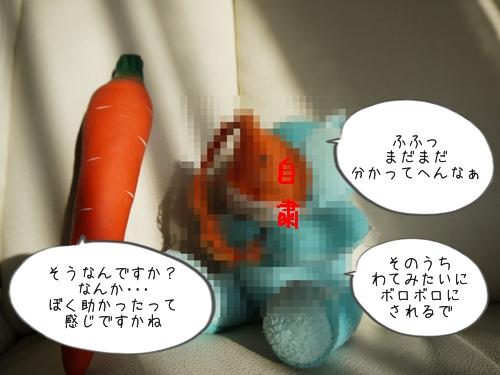 P1020766.jpg
