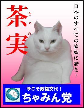 sennkyo_20100711164715.jpg