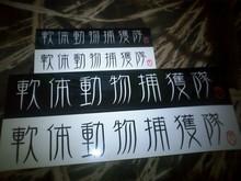 メタボな大熊猫のブログ-CA3B0059.jpg