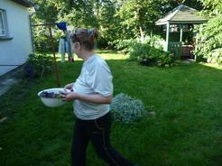 13庭で野菜や果物を収穫_サイズ変更