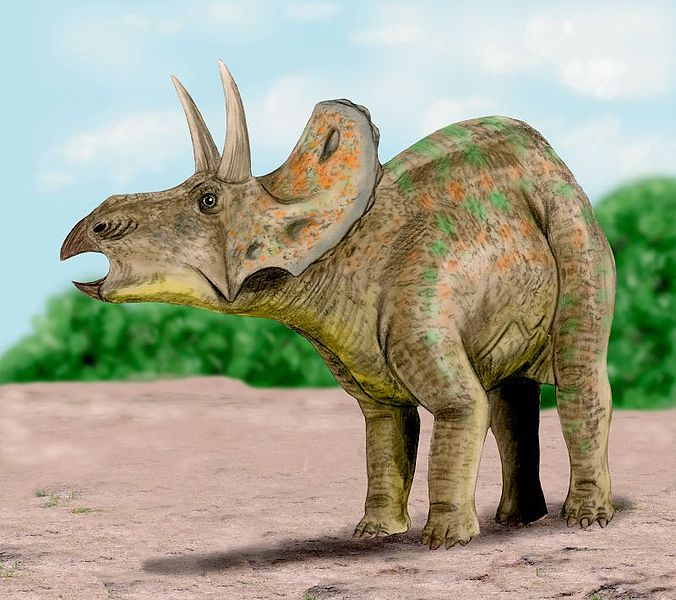 676px-Nedoceratops_BW.jpg