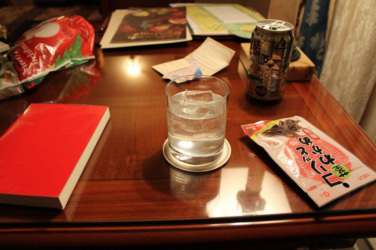 パピヨンの日記_20111110_ディズニーランド_13