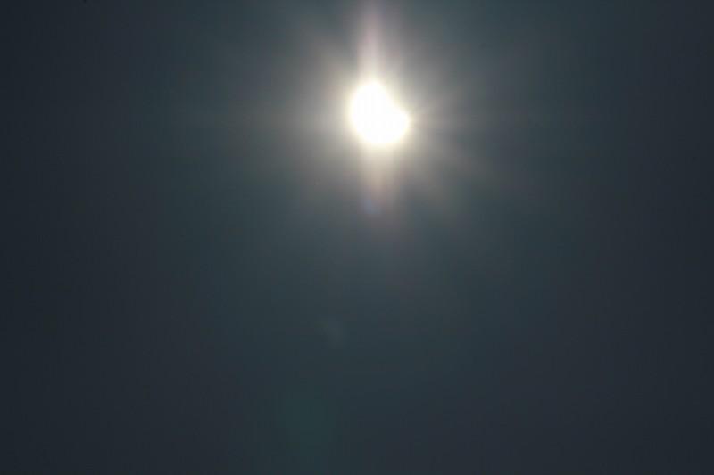 パピヨンの日記_20120521_金環日食_06