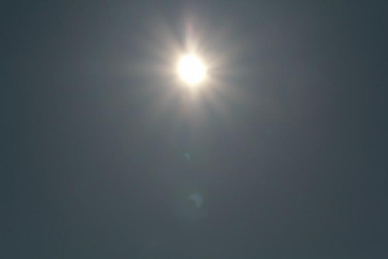パピヨンの日記_20120521_金環日食_05
