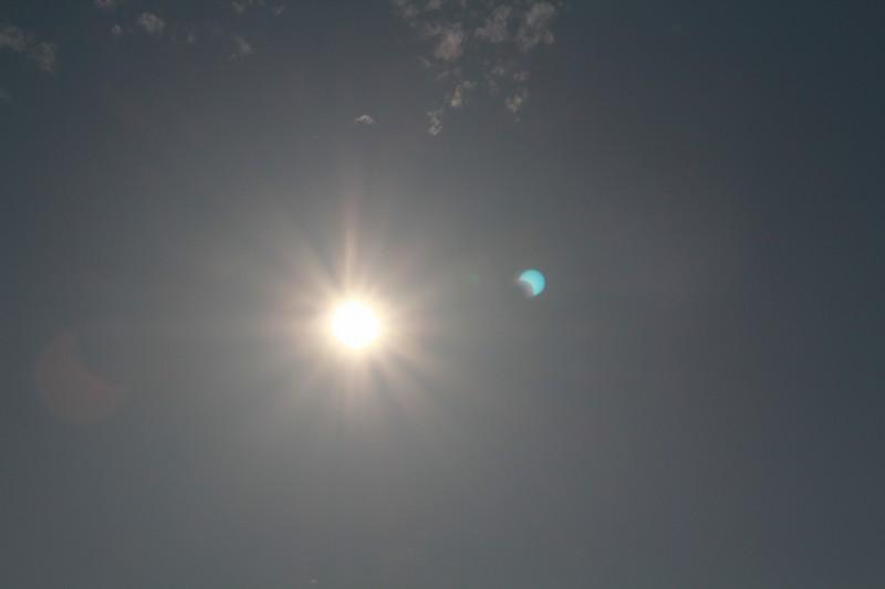 パピヨンの日記_20120521_金環日食_04