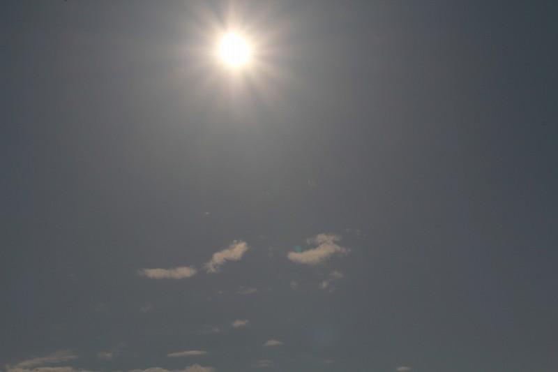パピヨンの日記_20120521_金環日食_03