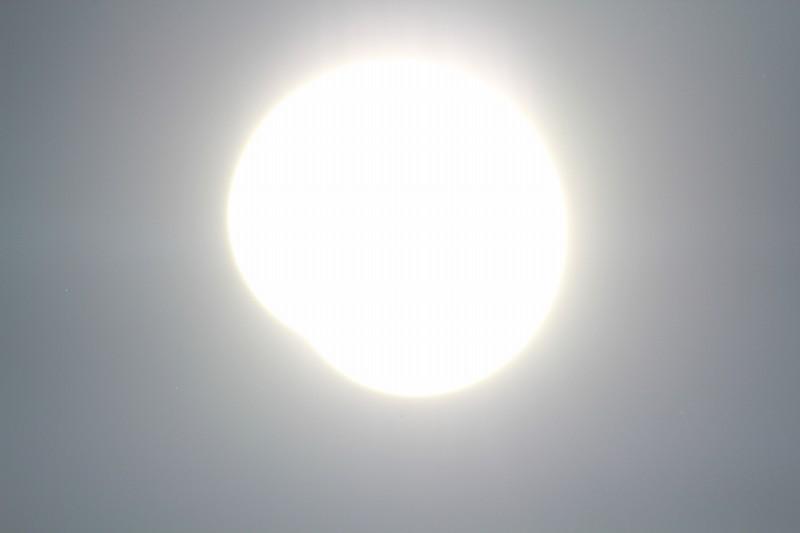 パピヨンの日記_20120521_金環日食_17