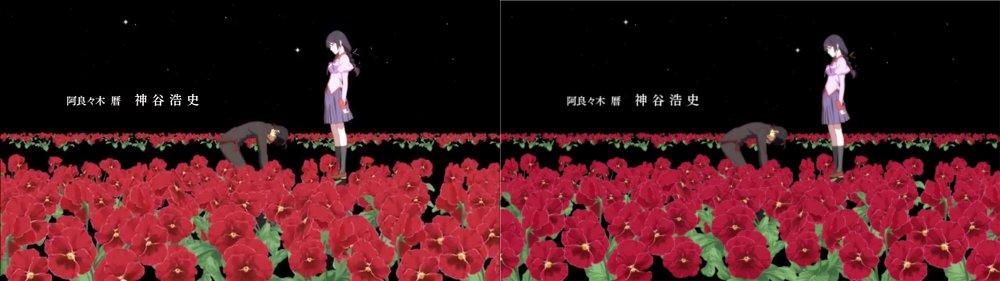 パピヨンの日記_20130307_猫物語(黒) つばさファミリー(上)_07