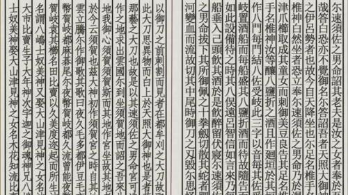 パピヨンの日記_20130307_猫物語(黒) つばさファミリー(上)_12