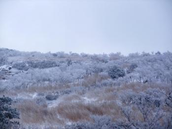 雪の大浪池 054 - コピー