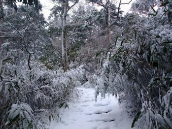 雪の大浪池 022 - コピー