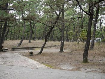 くにの松原キャンプ場 155