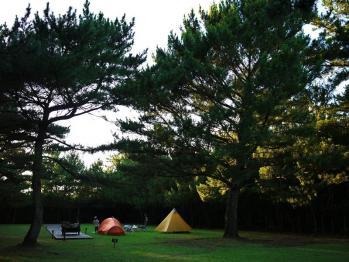 吹上海浜公園キャンプ 218
