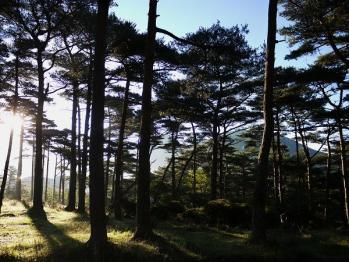 えびの高原キャンプ村 076