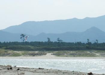 吹上海浜キャンプ 003