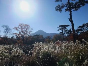 大幡山 095
