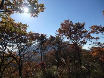 大幡山 093